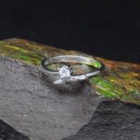圖示-白K金鑽石戒指 | DiaR07