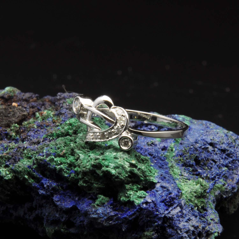 圖示-白K金鑽石戒指 | DiaR19